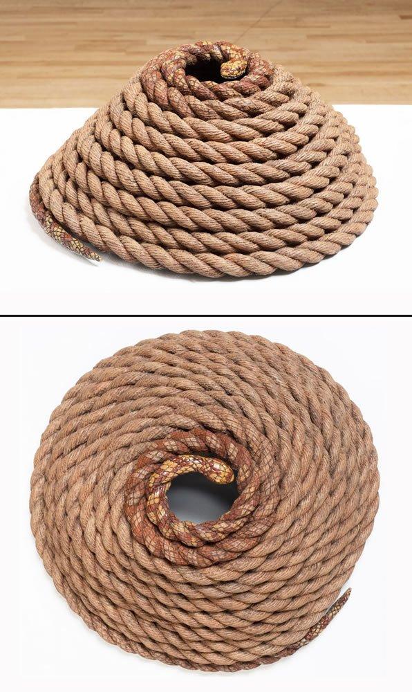 Rope Trick composite